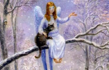 Kot i angel